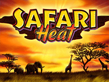 Safari Heat - слот в казино